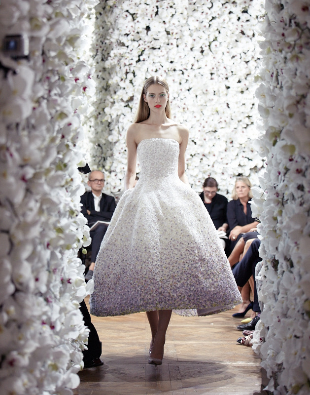 Esther Heesch Christian Dior Haute Couture FW 2012 Produced by BUREAU BETAK Picture by Daniel Beres