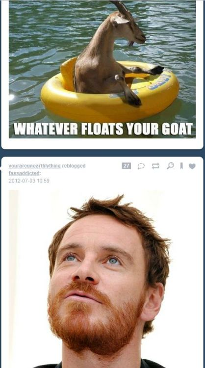 lostwiginity:  leandralocke:  Goats float Michael's boat? I thought it was horses.