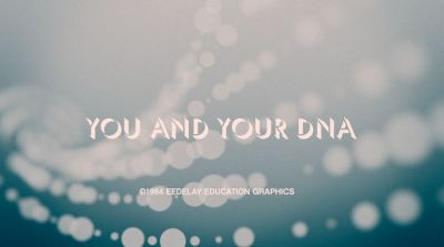 Preset - You And Your DNA A free AE comp for that educational film you're working on. Available at Red Giant People.