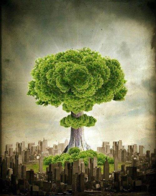 THE GREEN REVOLUTION The true economy has got to come back into balance with the very biosphere that sustains us. We need cleaner sources of  energy, more efficient machines and less polluting production methods that are also less energy intensive, We want a clean future. There has to be a revolution… but it has to be a revolution of consciousness.