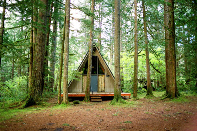 look at all that shade…. cabinporn:  A-frame in Tripple Falls, Oregon. Photograph by Amanda Smith.