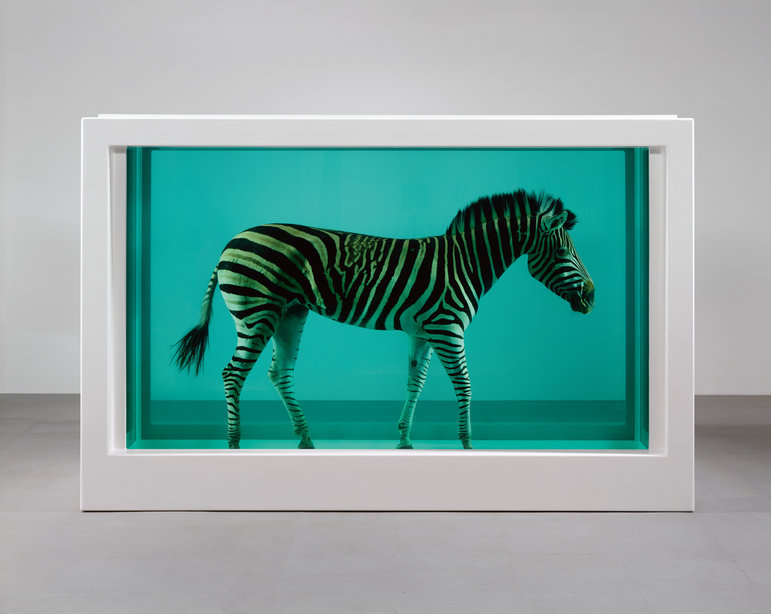 hoardingwithcuratorialintent:  dailymeh:  The year is 2029. Damien Hirst has hit a sort of creative block. He has exhibited sharks in formaldehyde, bulls in formaldehyde, zebras in formaldehyde, a motherfucking unicorn in formaldehyde. What more do you want from me? Damien asks. What the fuck more can you ask for?! I've given you everything you never knew you wanted. I've supplied the global art market with more animals in steel casings and formaldehyde preservative than anyone in the history of art. I've hired underlings to paint more colorful circles on white canvases than Da Vinci, Rembrandt and Warhol all put together. I have better than anyone exploited the fact that taking something really expensive and making it into a glitzy memento mori will make that thing even more expensive. Entire economies are built around speculating whether my next formaldehyde animal will fetch astronomical or merely enormous prices at Christie's! Next to Damien's suicide note are instructions for one final artwork to be carried out by his assistants. All of human history has led up to the moment when the auctioneer declares the work sold and the world's seventeenth richest man—who in 2029 happens to be a Mexican cartel leader slash national politician who is trying to impress his arts-savvy third trophy wife—comes to this terrible realization: Oh my god, I'm actually going to have to keep a naked old dude in a steel box filled with greenish fluid in my living room, aren't I? (Zebra in formaldehyde picture via museumuesum.)  Best Hirst narrative. EVER.
