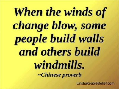 """When the winds of change blow, some people build walls and others build windmills."""