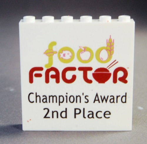 This was printed over a 1x6x5 white panel with the Food Factor logo which was the theme for this year's FLL competition.