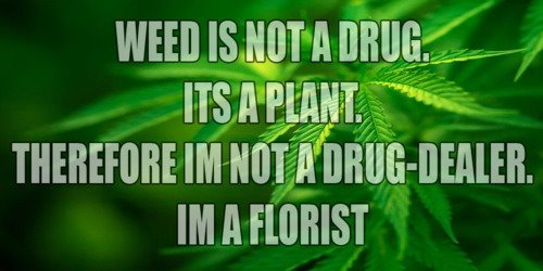 welovetheherb:  Weed Is Not A Drug. It's A Plant…