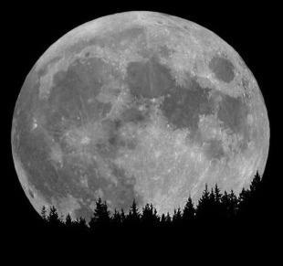 "Full moon tonight! Some refer to this event as the Full Buck Moon:  ""July is normally the month when the new antlers of buck deer push out of their foreheads in coatings of velvety fur. It was also often called the Full Thunder Moon, for the reason that thunderstorms are most frequent during this time. Another name for this month's Moon was the Full Hay Moon."" ~ farmersalmanac.com"