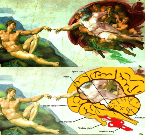 Just had an experience with this.  Michelangelo painted an Atheist work in a Christian Facility…  When I see this I see God is us.  Mind blown so hard.