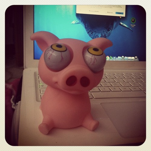 Best part of my day. Mi nuevo 🐷 #photoadayjuly  (Tomada con Instagram)
