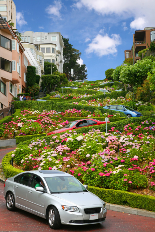 statravelus:  Check out the cool winding streets of San Francisco.