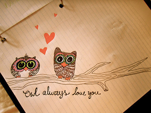 Love owls? Follow OwlStop.Tumblr.com!