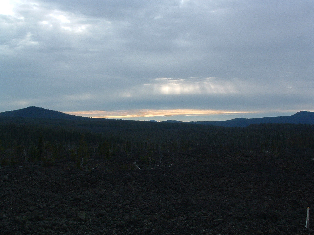 McKenzie Pass lava fields