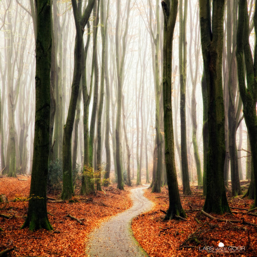 definitelydope:  Winter Around the Corner (by larsvandegoor.com)