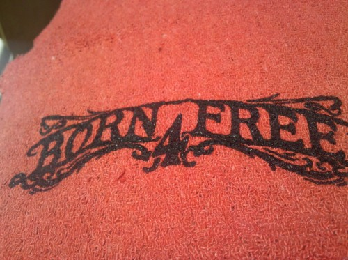 VANS gave out some cool BORN FREE 4 rags.