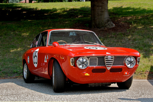 Strawberry shortcake Starring: Alfa Romeo Giulia Sprint GTA (by flyingdutchman025)