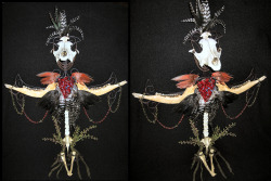 Custom Sculpture with Coyote skull, deer jaws,crow and cardinal wings on rooster pelt with raccoon spine deer vertebra on iron cross