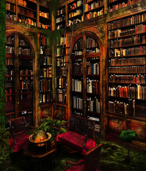 books-are:  Lost library by ~pankreas67