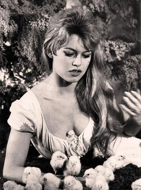 fuckyeahbardot:  Brigitte Bardot and animals ➥ 1/∞