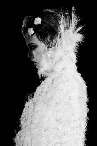 Oh my goodness!! It's Couture time!!!!!!!!!! Chanel Fall 2012