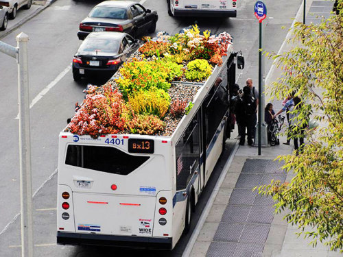 marce-lab:  Bus roots is a public and playful project that uses plants as a creative medium. It connects the citizens with their community while trying to use the least amount of resources and improving the quality of the environment around it. PURPOSE Reclaim forgotten space, increase quality of life and grow the amount of green spaces in the city. BENEFITS OF PLANT LIFE IN THE CITY: Aesthetic Value Mitigation of Urban Heat Island Effect Acoustical and Thermal Insulation Storm Water Reduction CO2 absorbtion Habitat Restoration Storm Water Management Public Education and Recreation Reclaiming Forgotten Real Estate  And they say New York City doesn't have enough green space!