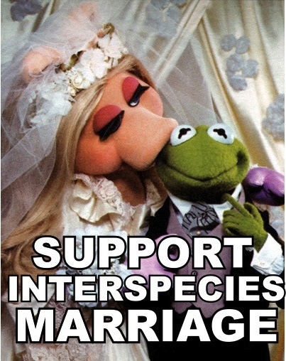 Support Interspecies Marriage….