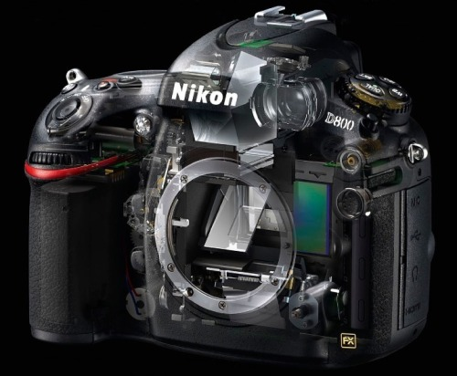 fromand:  nikon d800 (x-ray view)
