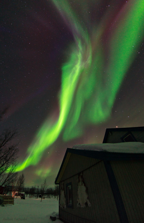 Wings of Heaven  Magical lights of Aurora Borealis appear over a traditional Sami village in Lapland, northern Sweden.