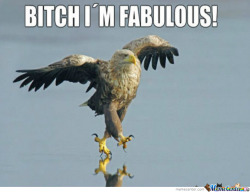 im fabulous!! lol