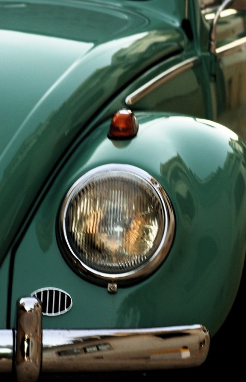 sunflowersandsearchinghearts:  Pinterest - VW Bug via Searching Hearts