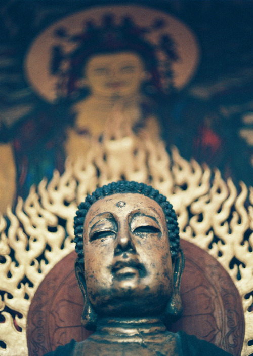 ombuddha:  In Asian languages, the word for 'mind' and the word for 'heart' are the same word. So when we hear the word 'mindfulness', we have to inwardly also hear 'heartfulness' in order to grasp it even as a concept, and especially as a way of being. Jon Kabat-Zinn. Photo by Robert Bronisevsky.