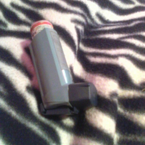 My bestfriend in the whole wide world Blu the Inhaler ! Thought that my followers should meet her lol..