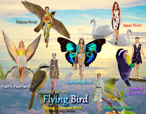 Flying Bird  Spring Summer 2012 Fashion Trend. More Flying Bird.