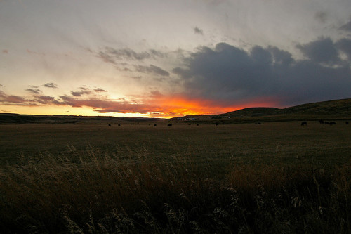 luminousfangs:  Sunset outside of Grass Range
