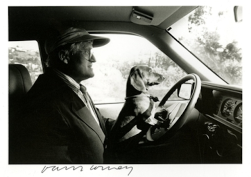 pacegallery:  Reblog of the day: Happy Birthday, David Hockney!   sfmoma:  artnet:  David Hockney and Stanley Here is a wonderful photograph of Pop Artist David Hockney driving with his beloved dog Stanley in the late 1980s.  Photographed by Ray Charles White.   Well, this is adorable. Thanks, artnet!