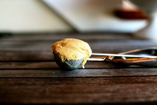 Pumpkin-Bourbon Ice Cream by kristin :: thekitchensink on Flickr.