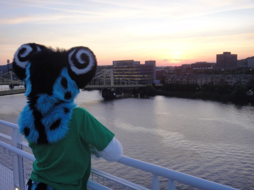 fuckyeahfursuiting:  Pittsburgh - by NeonSlushie