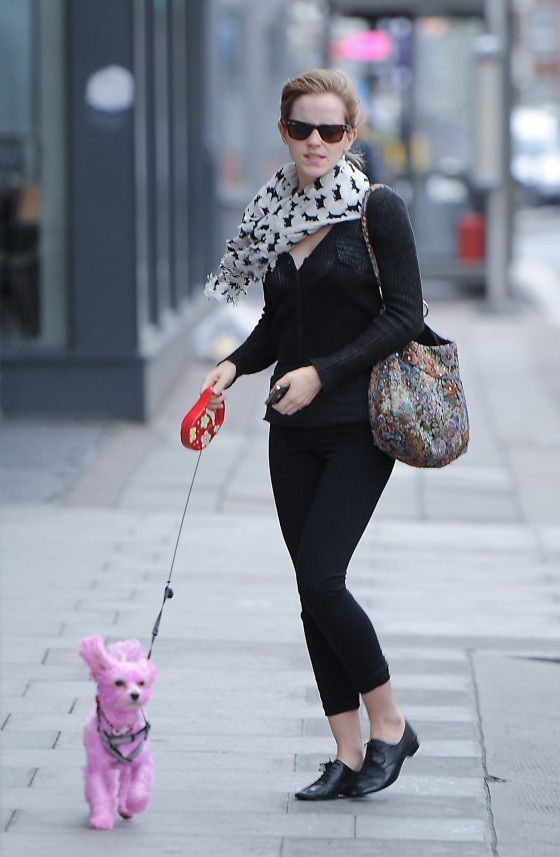 OMG SHE HAS A PINK DOG!! ahhh so cute