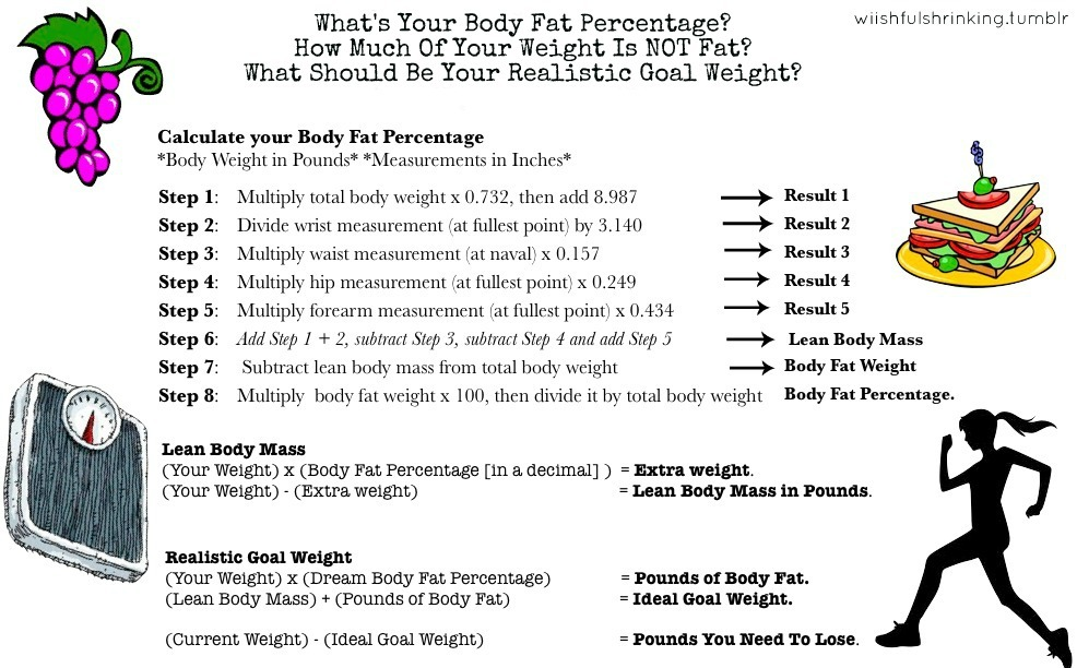 wiishfulshrinking:  What's Your Body Fat Percentage?How Much Of Your Weight Is NOT fat?What Should Be Your Realistic Goal Weight? CALCULATE!