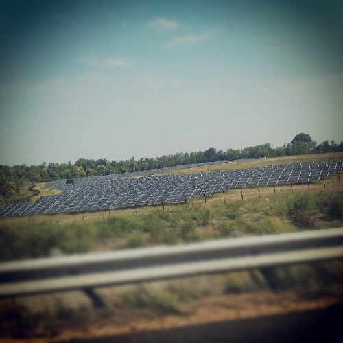 Solar panels #solar #energy #field  (Taken with Instagram)
