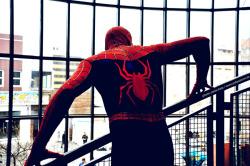 Spiderman spider man homem Aranha