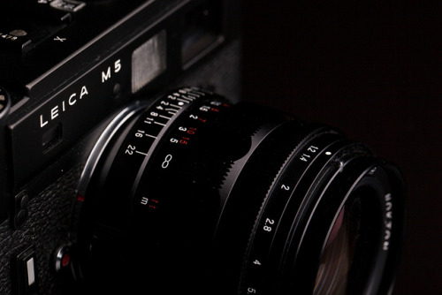 cameracadets:  Leica M5 & Voigtländer 35mm f/1.2 by tyler hayward on Flickr.