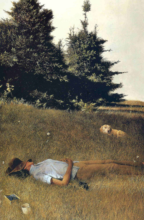 summertime  (painting by Andrew Wyeth) (via Andrew Wyeth)