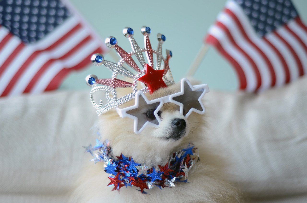 Happy Fourth Of July!!! SAVE ME A BURGER. Love, TommyPom
