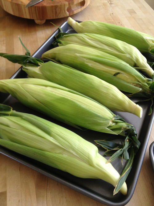 Corn: prepped and ready for grilling