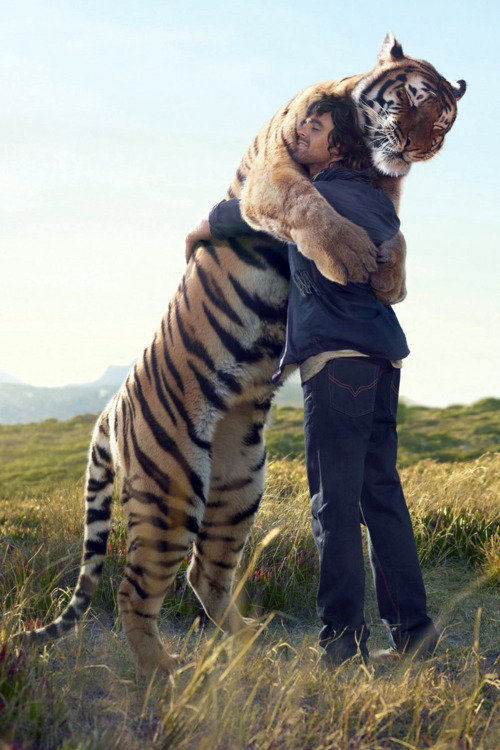 tears because I will never hug a tiger like this in my whole life.