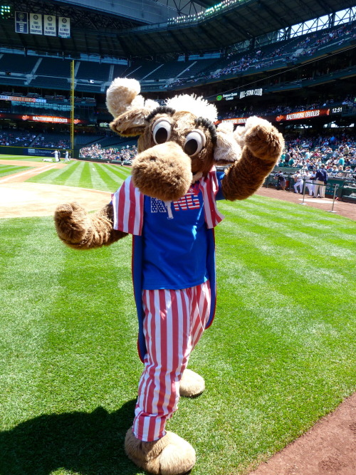 The Mariner Moose in his patriotic getup, complete with a red white and blue King's Court shirt.