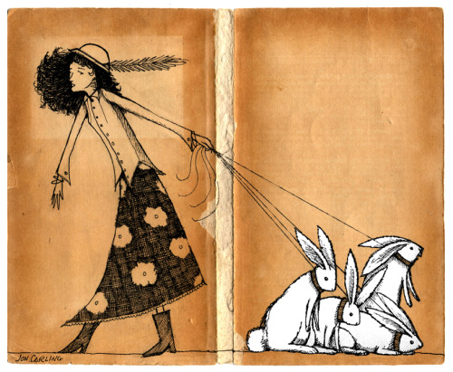 joncarling:  rabbit walker