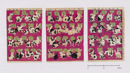 "By: Utagawa Yoshitsuya II, 1873 (Meiji 6). Calico and Tortoise-shell Rabbits, woodblock prints. The scene: 1870's Japan, the end of the Edo period, when Japan has resumed diplomatic trade relations with the West, and begins importing exotic plants and animals. Emperor Meiji 6 (inspired by Britain's theories of free markets without the burden of governmental interference) proclaims: All classes high and low shall unite in vigorously promoting the economy and welfare of the nation.  Of the most exotic imports, the ""calico"" or ""tortoise shell"" rabbit brings about an immediate breeding frenzy in the larger cities, particularly Osaka and Tokyo. ""All classes, high and low"" embrace the business of breeding, buying, trading, and selling rabbits, resulting in a frenetic speculative rabbit trade. The high-stake rabbit trade introduces a new crime wave, as everyone rushes to make millions from the exotic rabbits, and it isn't long before city governments implement regulations, requiring traders to report monthly activity and pay a one yen tax per rabbit sold to the government. The high-stake hopes of rabbit-breeding-wealth comes abruptly to an end, after a tumultuous two-year (1872-74) bubble."