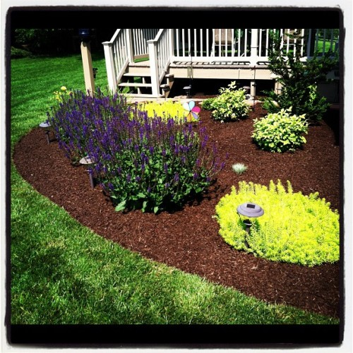 #landscape #design / #install #mulched still looks great after 2 years.  (Taken with Instagram)
