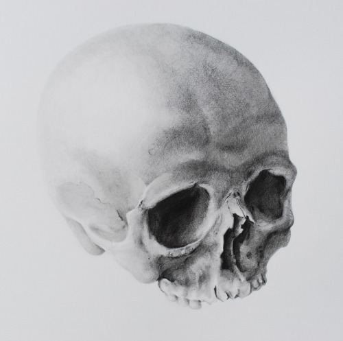 eatsleepdraw:  Graphite pencils on bristol paper by Amsi Bustillo