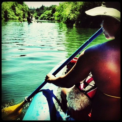 Spending the day canoeing on the Russian River #river #canoe #california # (Taken with Instagram)
